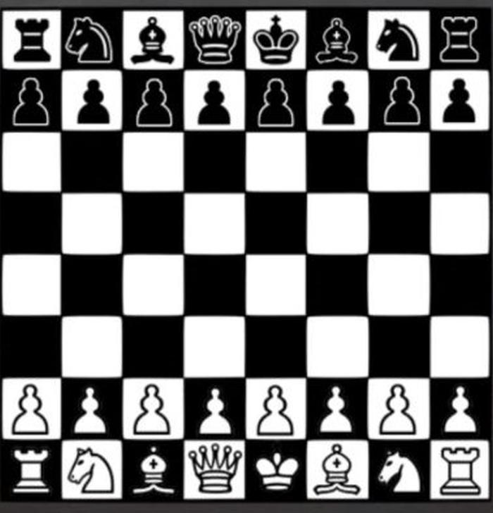 Шахматы Черно-Белые